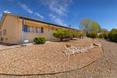 Rio Rancho Single Family Home For Sale: 4303 Sabana Grande Avenue SE