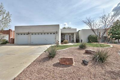 Single Family Home For Sale: 6300 Torreon Drive NE