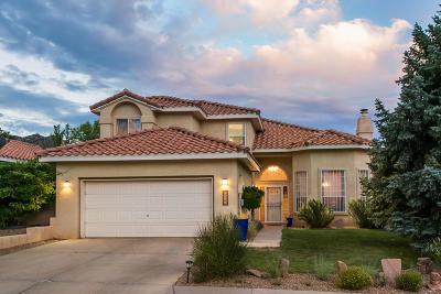 Albuquerque Single Family Home For Sale: 1206 Blue Quail Road NE