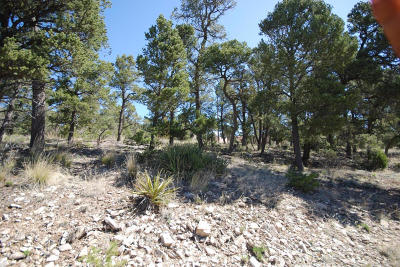 Residential Lots & Land For Sale: 45 Edelweiss