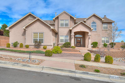 Albuquerque Single Family Home For Sale: 9820 Stone Street NW