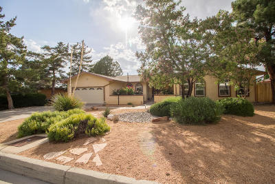 Albuquerque Single Family Home For Sale: 13213 Sunset Canyon Drive NE