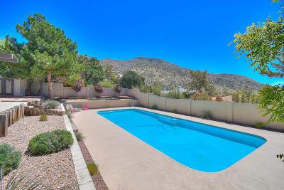 Albuquerque Single Family Home For Sale: 13112 Hidden Valley Road NE
