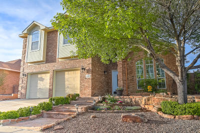 Albuquerque Single Family Home For Sale: 4705 Summerlin Road NW