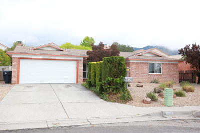 Albuquerque Single Family Home For Sale: 4824 Yucatan Drive NE