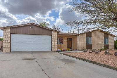 Albuquerque Single Family Home For Sale: 7304 Krista Drive NE