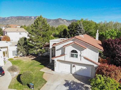 Albuquerque Single Family Home For Sale: 6100 Chamblee Court NE