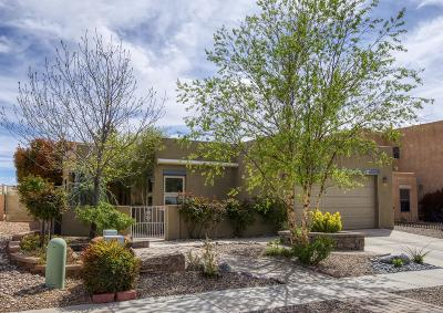 Albuquerque Single Family Home For Sale: 4120 Skyview Crest Road NW