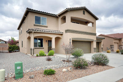 Albuquerque Single Family Home For Sale: 7001 Mete Sol Drive NW