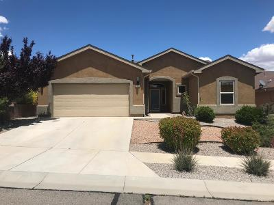 Los Lunas Single Family Home For Sale: 1100 Alegria Road NW