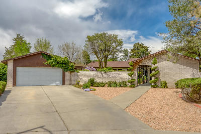 Albuquerque Single Family Home For Sale: 8817 Camino Osito NE