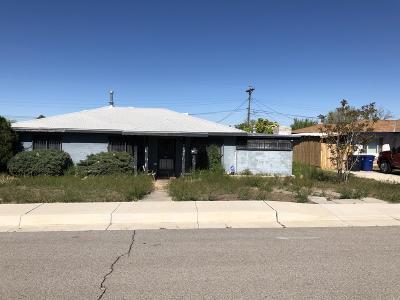 Albuquerque Single Family Home For Sale: 2131 Stanford Drive SE