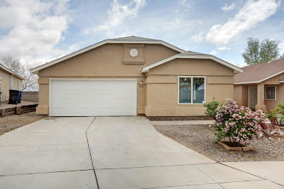 Albuquerque Single Family Home For Sale: 656 Galleon Drive NW