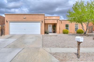 Albuquerque Single Family Home For Sale: 9921 Academy Street NW