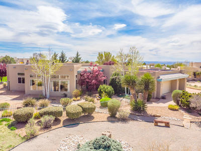 Albuquerque Single Family Home For Sale: 11804 Wilshire Avenue NE