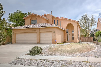 Albuquerque Single Family Home For Sale: 4816 Sherry Ann Road NW