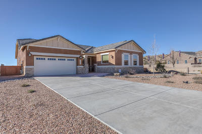 Rio Rancho Single Family Home For Sale: 2500 Desert View Road NE