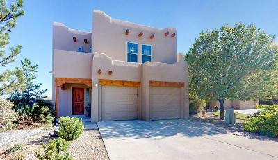 Albuquerque Single Family Home For Sale: 10004 Vista Cantera Lane NW