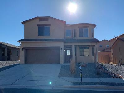 Albuquerque, Rio Rancho Single Family Home For Sale: 1162 Grace Street NE