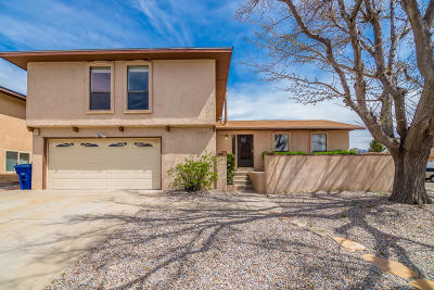 Albuquerque Single Family Home For Sale: 7700 Midge Street NE