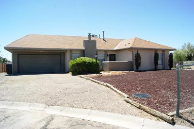 Albuquerque, Rio Rancho Single Family Home For Sale: 1310 Apex Court SE