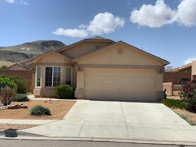 Los Lunas Single Family Home For Sale: 761 Blue Sage Avenue SW