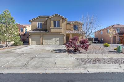 Albuquerque, Rio Rancho Single Family Home For Sale: 2619 Camino Seville SE