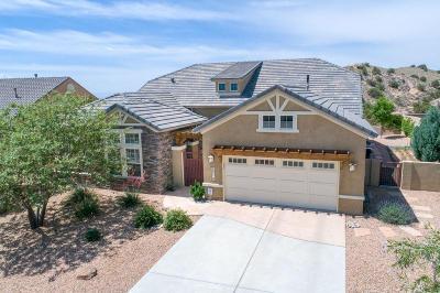 Albuquerque, Rio Rancho Single Family Home For Sale: 2316 Desert View Road NE
