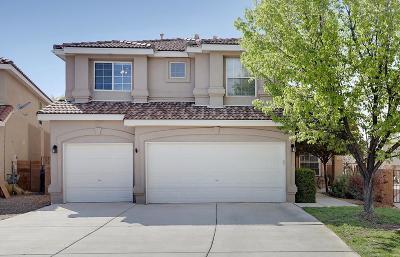 Albuquerque Single Family Home For Sale: 9104 Autumn Rose Drive NE