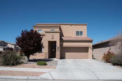 Albuquerque Single Family Home For Sale: 7101 Vista Terraza Drive NW