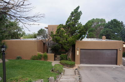 Albuquerque Single Family Home For Sale: 4509 Skyline Court NE