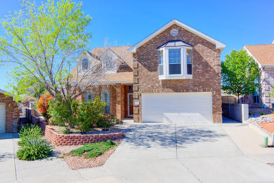 Albuquerque Single Family Home For Sale: 4508 Agate Hills Road NW