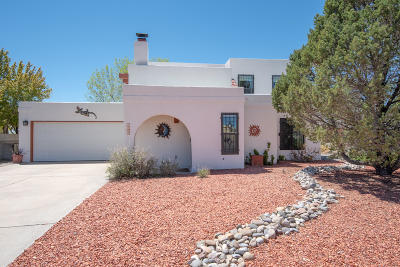 Albuquerque Single Family Home For Sale: 7909 Independence Drive NW