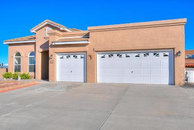 Albuquerque, Rio Rancho Single Family Home For Sale: 5060 Night Hawk Drive NE
