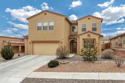 Albuquerque, Rio Rancho Single Family Home For Sale: 2609 Cerro Chafo Road SE