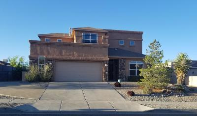 Albuquerque, Rio Rancho Single Family Home For Sale: 4953 Dream Dancer Drive NE