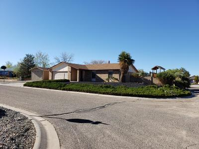 Rio Rancho Single Family Home For Sale: 2551 Chip Court SE