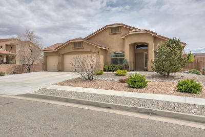 Rio Rancho Single Family Home For Sale: 3909 Cholla Drive NE