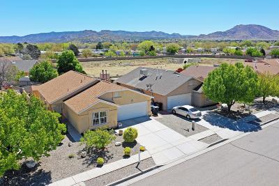 Albuquerque Single Family Home For Sale: 516 Glacier Bay Street SE