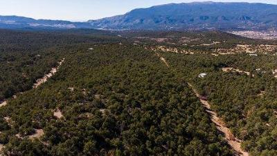Bernalillo County Residential Lots & Land For Sale: 180 Forest Road 462