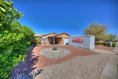 Albuquerque Single Family Home For Sale: 313 Martha Street NE