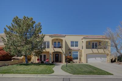 Rio Rancho Single Family Home For Sale: 3478 White Horse Drive SE