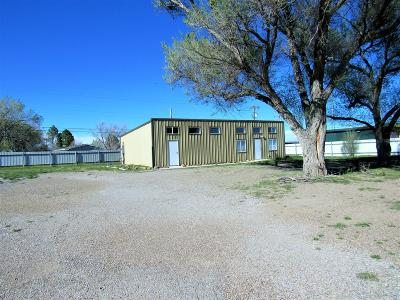 Torrance County Single Family Home For Sale: 817 Us Route 66