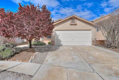 Albuquerque Single Family Home For Sale: 9815 Cerro Largo Place NW