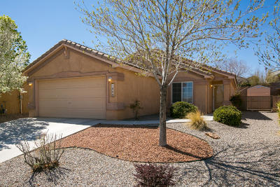 Albuquerque Single Family Home For Sale: 1005 Kanaga Drive NW