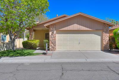Albuquerque Single Family Home For Sale: 324 Palmer Park Drive NE