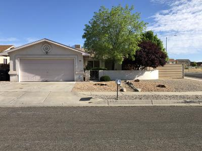 Albuquerque Single Family Home For Sale: 9001 Sunridge Avenue SW