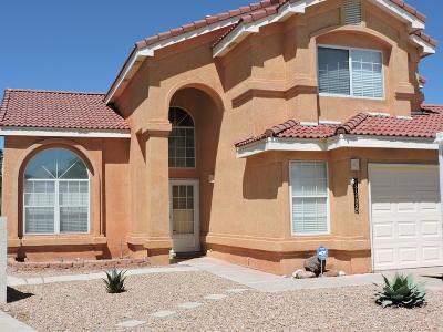 Albuquerque Single Family Home For Sale: 11405 Canyonlands Road SE