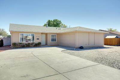 Albuquerque Single Family Home For Sale: 8132 Eddy Avenue NE