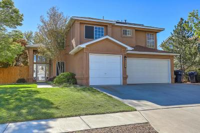 Albuquerque Single Family Home For Sale: 6601 Mesa Solana Place NW